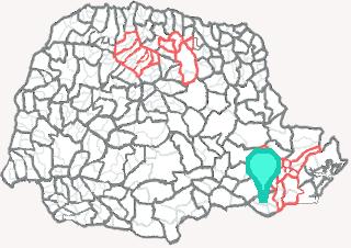 Comarca de Rio Negro - Paraná